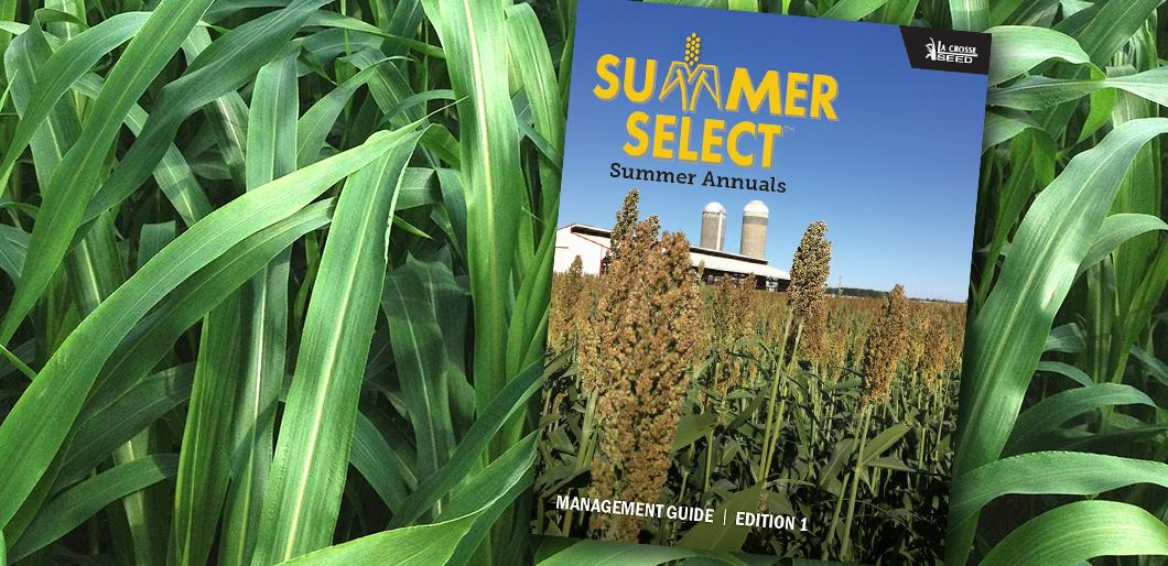 Download The Summer Select® Summer Annuals Guide