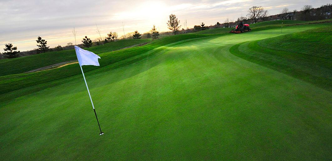 Bentgrass Available from La Crosse Seed